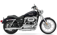 09 6th Prize - Sportster 1200 Custom
